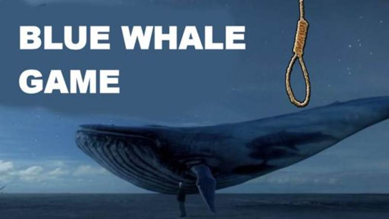 Blue Whale Challenge: SC orders DD, other TV channels to air programme on 'evil impact' of game