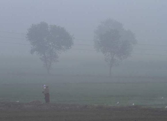 Dense fog engulfs Uttar Pradesh, night temperature falls
