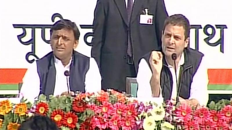 PM Narendra Modi likes to `read horoscope, peep into bathrooms`, he will get jolt from UP poll results: Rahul Gandhi