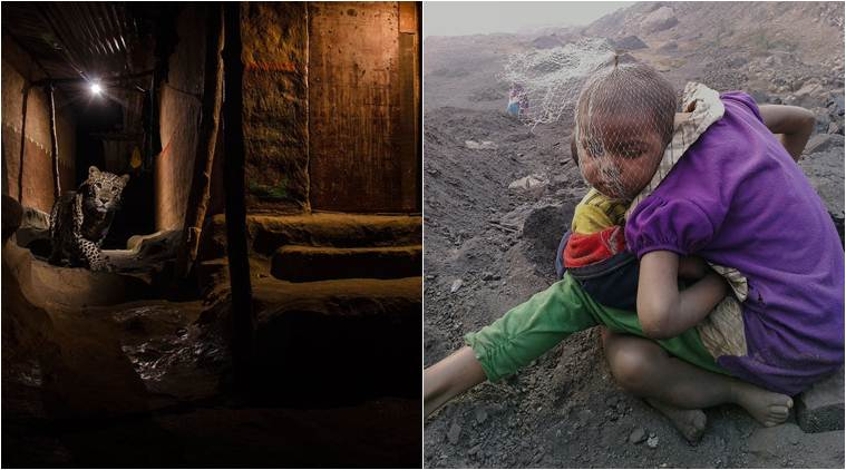 Best of 2016: Six Indian photographers who won prestigious international awards this year