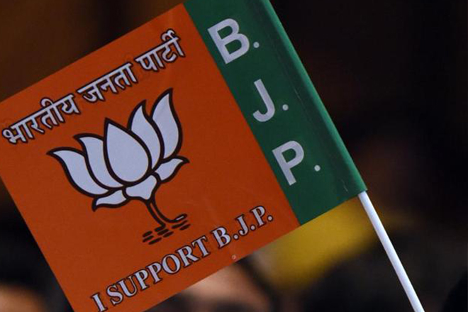 Who is Preeti Mahapatra? BJP's last minute surprise changes RS maths in UP